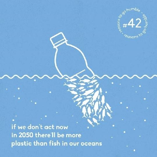 Thay đổi chiếc bàn chải nhựa, hành động nhỏ vì hành tinh thân yêu